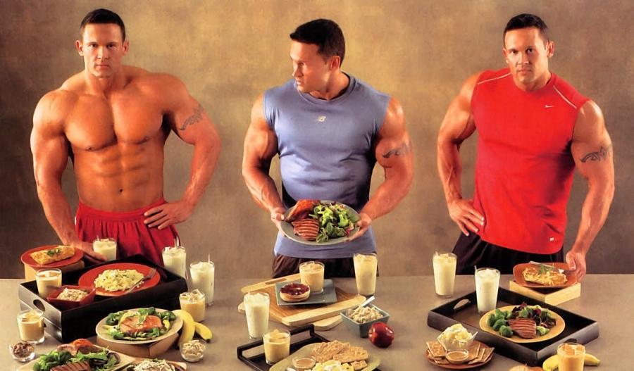 qué comen nuestros músculos